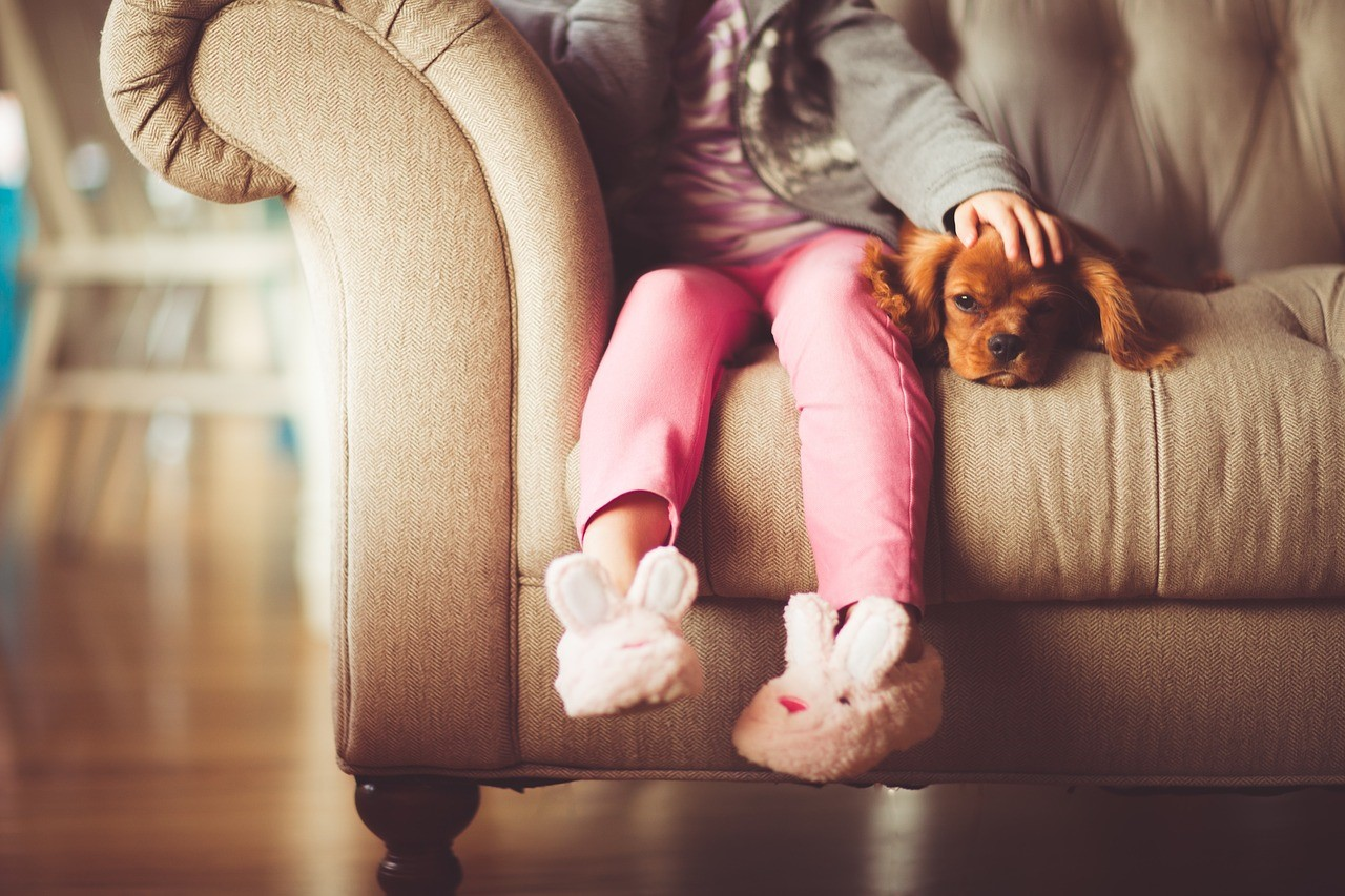 Child and dog photo via Pixabay