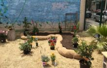 The Garden Church plantings